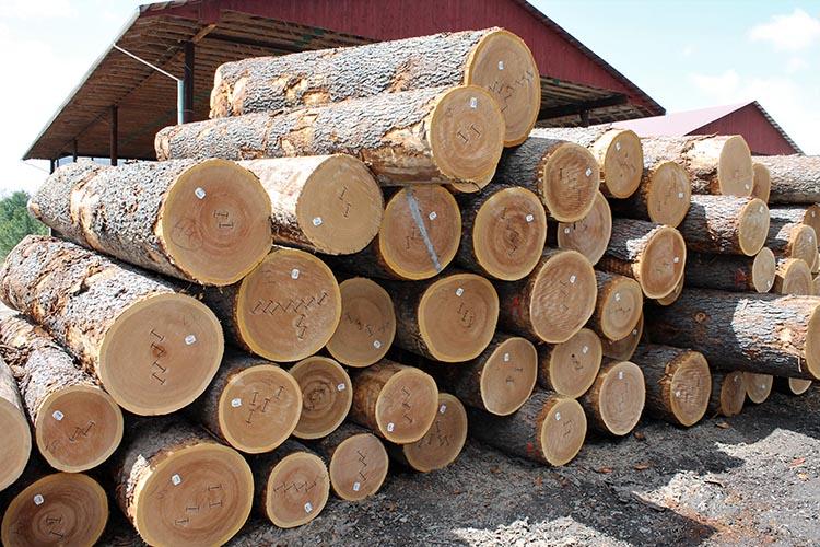 how to buy veneer hardwoods online